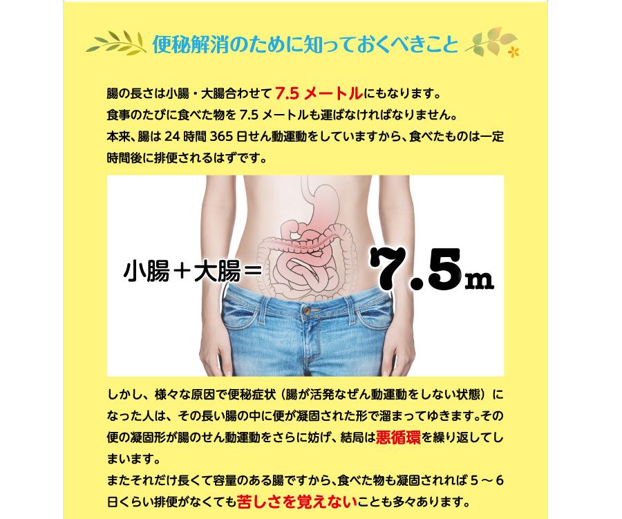 便秘解消のために知っておくべきこと 腸の長さは小腸・大腸合わせて7.5メートルにもなります。食事のたびに食べた物を7.5メートルも運ばなければなりません。本来、腸は24時間365日せん動運動をしていますから、食べたものは一定時間後に排便されるはずです。しかし、様々な原因で便秘症状 (腸が活発なぜん動運動をしない状態)になった人は、その長い腸の中に便が凝固された形で溜まってゆきます。その便の凝固形が腸のせん動運動をさらに妨げ、結局は悪循環を繰り返してしまいます。またそれだけ長くて容量のある腸ですから、食べた物も凝固されれば5〜6日くらい排便がなくても苦しさを覚えないことも多々あります。