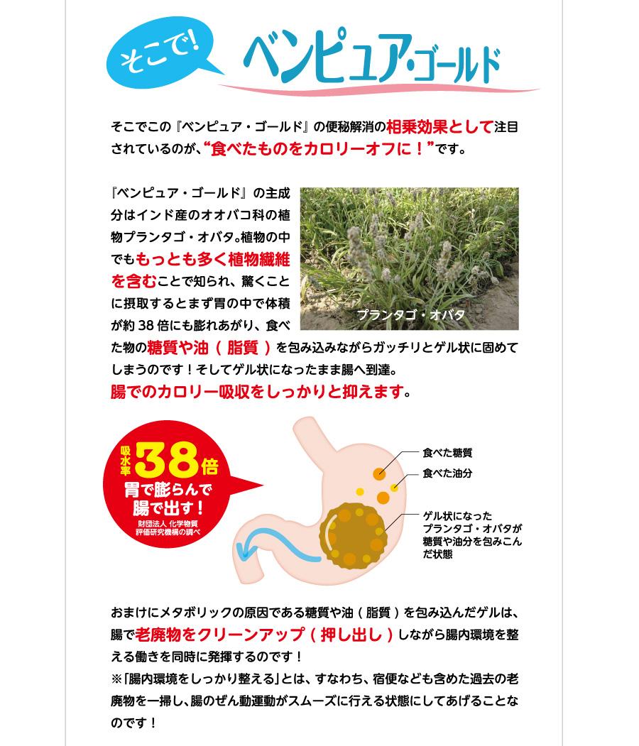 """そこで!ベンピュア・ゴールド そこでこの『ベンピュア・ゴールド』の便秘解消の相乗効果として注目されているのが、""""食べたものをカロリーオフに!""""です。『ベンピュア・ゴールド』の主成分はインド産のオオバコ科の植物プランタゴ・オバタ。植物の中でももっとも多く植物繊維を含むことで知られ、驚くことに摂取するとまず胃の中で体積が約38倍にも膨れあがり、食べた物の糖質や油(脂質)を包み込みながらガッチリとゲル状に固めてしまうのです!そしてゲル状になったまま腸へ到達。腸でのカロリー吸収をしっかりと抑えます。おまけにメタボリックの原因である糖質や油(脂質)を包み込んだゲルは、腸で老廃物をクリーンアップ(押し出し)しながら腸内環境を整える働きを同時に発揮するのです!※「腸内環境をしっかり整える」とは、すなわち、宿便なども含めた過去の老廃物を一掃し、腸のぜん動運動がスムーズに行える状態にしてあげることなのです!"""